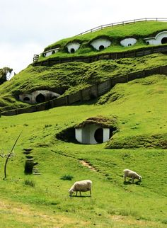 Hobbiton Town, Matamata, New Zealand