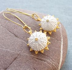 Hey, I found this really awesome Etsy listing at http://www.etsy.com/listing/96064779/gold-and-white-sea-urchin-earrings-beach