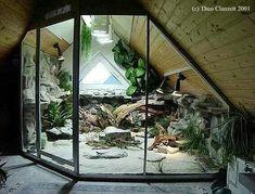 Large Terrarium (or vivarium) that I'd love to strive for one day. Reptile Habitat, Reptile Room, Reptile Cage, Reptile Enclosure, Chameleon Enclosure, Tarantula Enclosure, Tortoise Enclosure, Animal Room, Les Reptiles