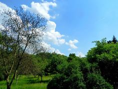Pohled ke Sv. Matěji • Mapy.cz Golf Courses, Clouds, Outdoor, Outdoors, Outdoor Games, The Great Outdoors, Cloud
