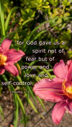 2 Timothy 1:7 For God hath not given us the spirit of fear; but of power, and of love, and of a sound mind.