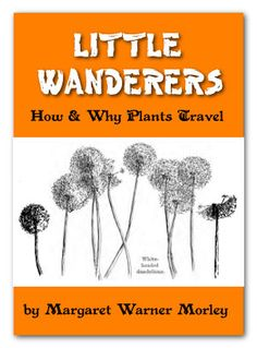 Leaves and Flowers + Little Wanderers   Homeschool Freebie of the Day