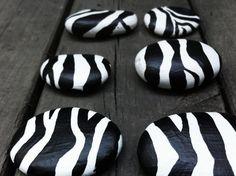 Animal Print Safari Magnets