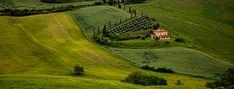 Golf Courses, Italy, Painting, Art, Art Background, Italia, Painting Art, Kunst, Paintings