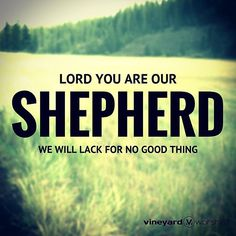 Lord You are our Shepherd // We will lack for no good thing // Lead On #worship #vineyardmusic