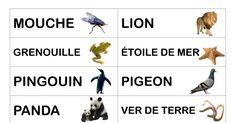 LCDL - référentiel vocabulaire majuscule.pdf