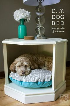 Side table dog bed