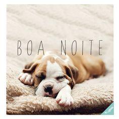 BOA NOITE PESSOAL! <3 #petmeupet #cachorro #boanoite