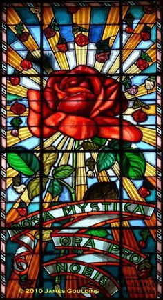 """Mary, this is so beautiful.... """"stained glass rose""""... thanks for sharing with us..chat with you later...xoxoxo"""