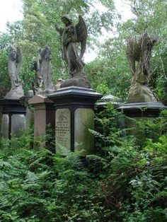 Abney Park Cemetery and Catacombs in Stoke Newington. Built in the early 18th century by Lady Mary Abney.