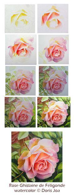 watercolour rose steps