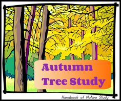 Handbook of Nature Study: Outdoor Hour Challenge - Year long Tree Nature Study