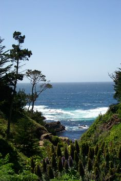Hwy 1 by Carmel California Places In California, California Coast, California Dreamin', Northern California, Beautiful Places To Visit, Great Places, Places To See, Ventura Highway, Highway 1
