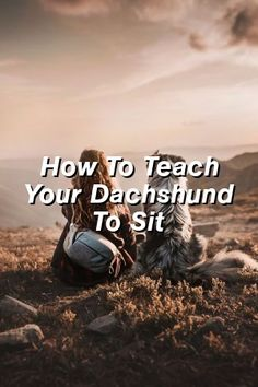 Baby Overalls Speak: How To Teach Your Dachshund To Sit Large Dog Breeds, Best Dog Breeds, Large Dogs, Small Dogs, Dog Shaking, Frozen Dog, Baby Overalls, What Dogs, Getting A Puppy