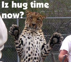 Hug time?