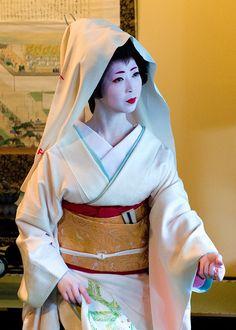 Jungles in Paris   Painted Ladies: Geishas of Kyoto, Japan