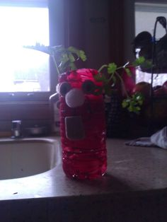 Product Mommy: Garden Crafts for Children