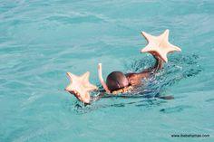 Exuma Cays, Exuma, Bahamas. Its Bob! We did his boat tour...loved him!