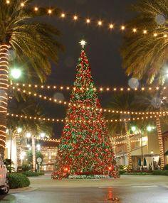 Christmas tree, Destin Commons shopping center, Destin, Florida.