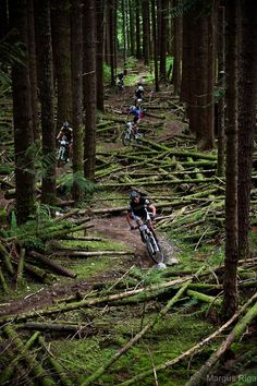 BC Bike Race, when: June 29–July 6  The BC Bike Race is a seven-day mountain bike stage race from Victoria to Whistler that includes more than 500 international participants each year. The race is beloved by participants and has become a cultural phenomenon in the cycling world. It provides a tour of BC´s West Coast trails, towns, and lifestyle. The race managers often invite celebrity guests who ride on certain stages.