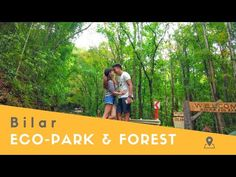 Eco-Park & Man-Made Forest in Bilar (Bohol, Philippines) - YouTube Bohol Philippines, Animal Species, Island, Park, Youtube, Islands, Parks, Youtubers, Youtube Movies