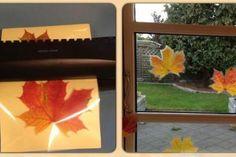 Laminer efterårsblade til smuk vinduespynt