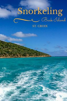 Snorkeling at Buck Island off the coast of St. Croix, USVI, is a great way to spend a day in paradise | Travel Addicts