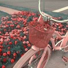 red flowers and pink bike Peach Aesthetic, Aesthetic Vintage, Aesthetic Photo, Vintage Modern, Aesthetic Pictures, Imagenes Color Pastel, Mode Outfits, Insta Photo, Pastel Pink