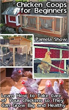 Amazon.com: Chicken Coops For Beginners: Learn How To Take Care Of Your Chickens So They Can Grow Big And Healthy: (Breeds Guide, Chicken Tractors & Coops, Hatching ... how to become absolutely self-sufficient) eBook: Pamela Show: Kindle Store