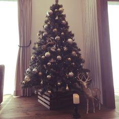 ニトリ/リビング/ニトリのオーナメント/ダイソー/すのこリメイク/クリスマスツリー…などのインテリア実例 - 2015-11-16 10:29:09 | RoomClip(ルームクリップ)