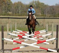4 Fences 7 Ways How to make the most out of limited practice jumps.