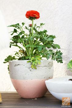 Deck Decorating Ideas: DIY cement planter. Jen Stagg of the DIY blog withHeart shows how to make this cement planter on The Home Depot Blog.