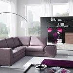 sofa and modern furniture