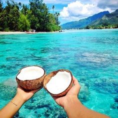 Fresh coconut and the beach, what more could we ask for!? #ladylux #designerswimwear #bikinis