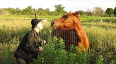Friendly kisses  BP Fallon & The Red Horse on Red Horse Ranch in Texas by Aaron Lee Tasjan by bp fallon, via Flickr