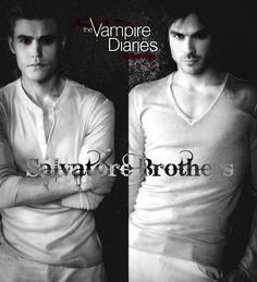 VAMPIRE SALAVORTE BROTHERS   The Vampire Diaries Salvatore Brothers