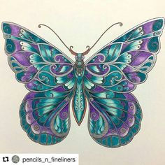 completed pages ivy and the inky butterfly - Yahoo Image Search Results Butterfly Crafts, Butterfly Art, Butterfly Design, Colouring Pages, Coloring Books, Art Plastic, Johanna Basford Coloring Book, Dragonfly Art, Butterfly Wallpaper