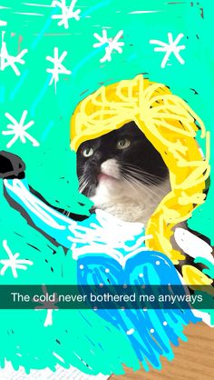 Funny snapchats Funny Snapchat Pictures, Funny Pictures, Like Animals, Funny Animals, Snapchat Art, Funniest Snapchats, Things Kids Say, Funny Jokes For Kids, Friends Tv Show
