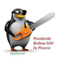 Penguin đang triển khai - Ảnh hưởng đến 1% truy vấn tìm kiếm