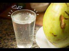 Como cultivar o Kefir de água na água de coco - YouTube
