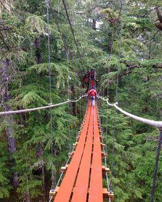 Suspended pathway in Alaska
