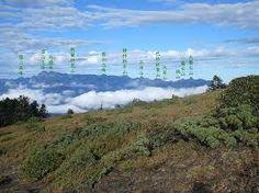 「陽明山稜線」的圖片搜尋結果