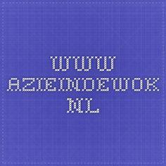 www.azieindewok.nl