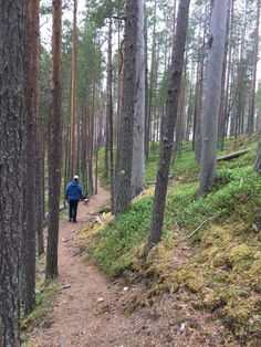 Trekking, Travel Inspiration, Natural Beauty, National Parks, Hiking, Adventure, Nature, Outdoor, Finland