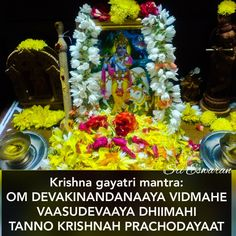Krishna gayatri mantra:  OM DEVAKINANDANAAYA VIDMAHE VAASUDEVAAYA DHIIMAHI TANNO KRISHNAH PRACHODAYAAT Shiva, Krishna, Hindu Vedas, Gayatri Mantra, Vastu Shastra, Tantra, Hinduism, Feng Shui, Holi