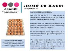 datos sobre huevos