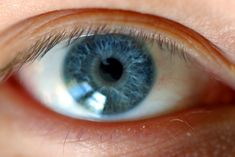 BioOrbis: Todas as pessoas com olhos azuis descendem de um ú...
