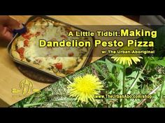 A Little Tidbit: Making Dandelion Pesto Pizza w/ The Urban-Aboriginal Pre Cooked Chicken, How To Cook Chicken, Aboriginal Food, Dried Basil Leaves, Pesto Pizza, Pizza Ingredients, Pastry Brushes, Instant Yeast, Pizza Dough