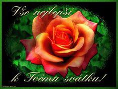 Přání k svátku Obrázky 2 Runes, Flowers, Plants, Facebook, Floral, Plant, Royal Icing Flowers, Florals, Flower