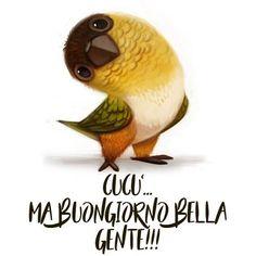 Good Morning, Animals, Instagram, Cristiani, Gif, Arduino, Bella, Facebook, Happy